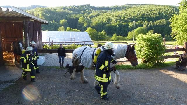 Gemeinsame Übung der Feuerwehren Irmgarteichen, Hainchen und Rittershausen